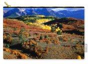 C S Landscape Carry-all Pouch