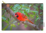 Cardinal Birds Hanging Out On A Tree Carry-all Pouch