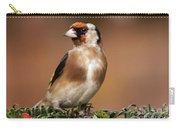 European Goldfinch Bird Close Up   Carry-all Pouch