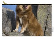 Finnish Lapphund Carry-all Pouch