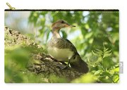 Immature Hooded Merganser Carry-all Pouch