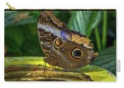 5113- Butterfly Carry-all Pouch