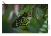 5156- Butterfly Carry-all Pouch