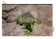 52- Green Iguana  Carry-all Pouch