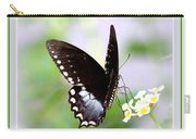 5276-001- Butterfly - Swallowtail Carry-all Pouch