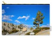 D L Landscape Carry-all Pouch
