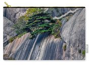 5786- Yellow Mountains  Carry-all Pouch
