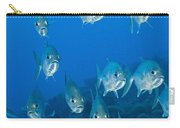 A School Of Bigeye Trevally, Papua New Carry-all Pouch