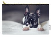 Boston Terrier Puppy Carry-all Pouch