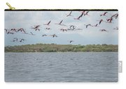 Colombia Sanctuary Of Flamingos Near Riohacha Carry-all Pouch