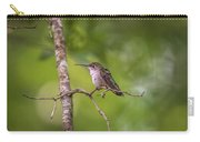 Hummingbird Found In Wild Nature On Sunny Day Carry-all Pouch