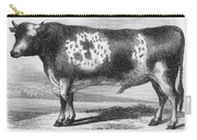 Cattle, 19th Century Carry-all Pouch