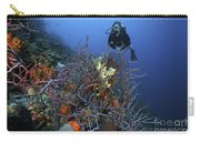 Scuba Diver Swims Underwater Amongst Carry-all Pouch by Terry Moore