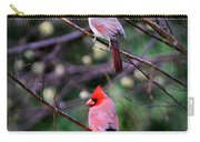 7440-008 Cardinal Carry-all Pouch