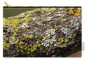 Bare Tree Branches In Early Spring Carry-all Pouch