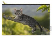 Kitten In A Tree Carry-all Pouch