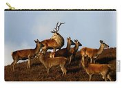Red Deer In The Highlands Carry-all Pouch