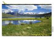 Springtime In Torres Del Paine Carry-all Pouch