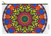 812-04-2015 Talisman Carry-all Pouch
