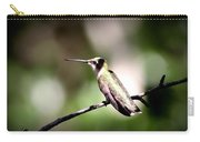 8181-001 - Ruby-throated Hummingbird Carry-all Pouch