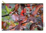 8624-001 - Northern Cardinal Carry-all Pouch