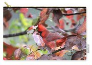 8627-001 - Northern Cardinal Carry-all Pouch