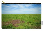 Paynes Prairie Carry-all Pouch