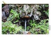 Public Fountain In Palma Majorca Spain Carry-all Pouch