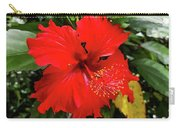 The El Yunque National Forest, Puerto Rico Carry-all Pouch
