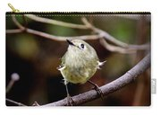 9343-00-ruby-crowned Kinglet Carry-all Pouch