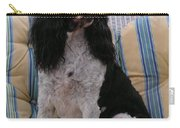 #940 D1045  Farmer Browns Springer Spaniel Carry-all Pouch