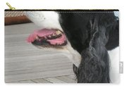 #940 D1060 Farmer Browns Springer Spaniel Carry-all Pouch