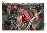 9971-002 - Northern Cardinal Carry-all Pouch