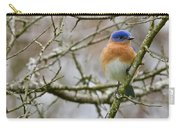 A Bluebird  Carry-all Pouch