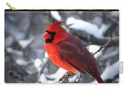 A Cardinal Day... Carry-all Pouch