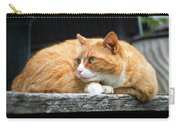 A Cat Named 'kitty' Carry-all Pouch