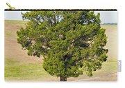 A December Cedar Carry-all Pouch