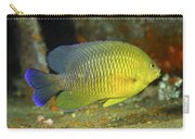 A Dusky Damselfish Offshore From Panama Carry-all Pouch by Michael Wood