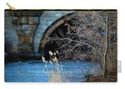 A Frozen Corner In Central Park Carry-all Pouch by Chris Lord