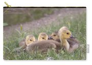 A Gaggle Of Goslings Carry-all Pouch