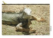 A Glaring Common Iguana On Aruba's Wild Side Carry-all Pouch