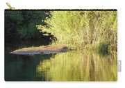 A Golden Reflection Carry-all Pouch