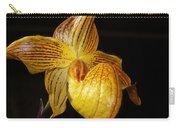 A Golden Slipper Carry-all Pouch