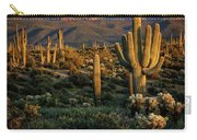 A Golden Sonoran Evening  Carry-all Pouch
