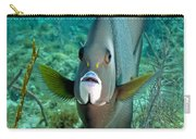 A Gray Angelfish In The Shallow Waters Carry-all Pouch by Michael Wood
