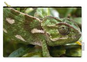 A Green Chamaeleonidae Carry-all Pouch