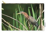 A Green Heron Stalks Prey Carry-all Pouch