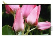 A Little Sunshine Please Carry-all Pouch