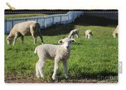 A Longwool Lamb Carry-all Pouch