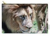 A Male Lion, Panthera Leo, King Of Beasts Carry-all Pouch